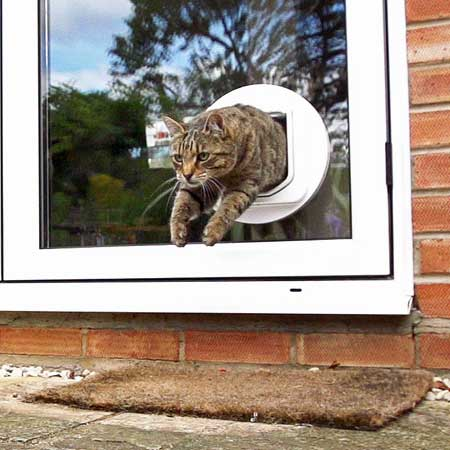 SureFlap DualScan cat door (white) installed in glass