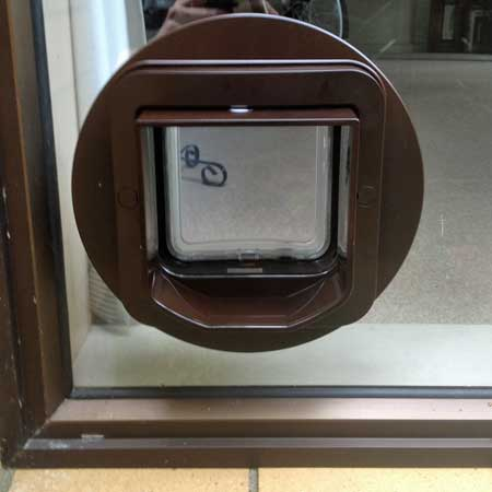 SureFlap DualScan cat door (brown) installed in glass