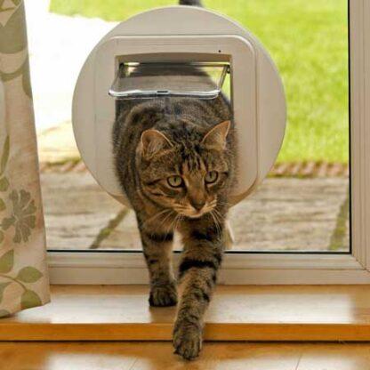SureFlap microchip cat door (white) installed in glass