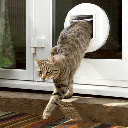 SureFlap microchip cat door (white) installed in glass & SureFlap microchip cat door + glass adapter | Cat Door Company Pezcame.Com