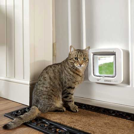 SureFlap microchip cat door (white) installed in timber