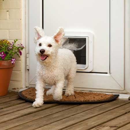 SureFlap microchip large pet door (white) installed in timber