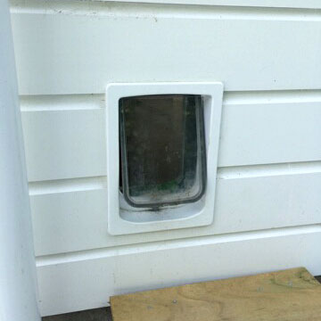 Dogwalk Small Dog Door installed in timber wall
